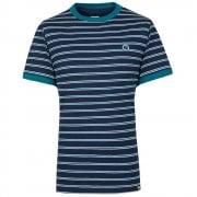 Striped T Shirt in Navy